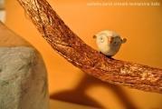 <h5>Civettina fischietto in argilla di Carlotta Parisi</h5><p>Dettaglio su fischietto in argilla.</p>