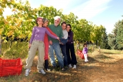 <h5>Con la mia famiglia a Nostravita</h5><p>Tutti insieme nella vigna durante la vendemmia</p>
