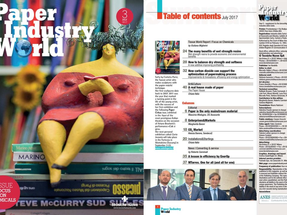Paper Industry World mette in copertina una mia scultura